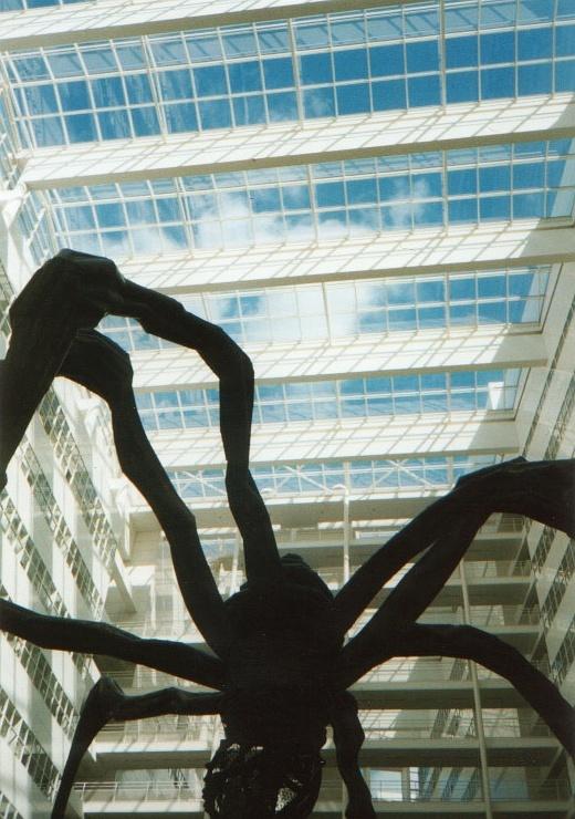 Haag Spider