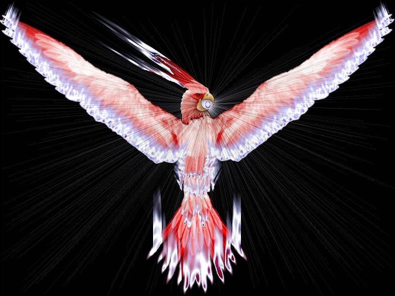 Nova Phoenix