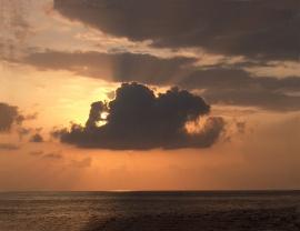 Sunset after a rain