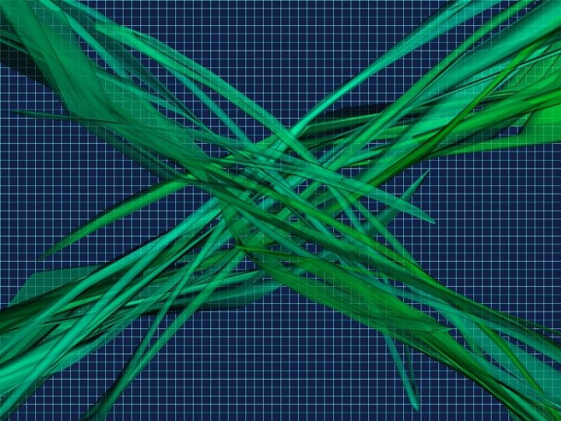 X Web