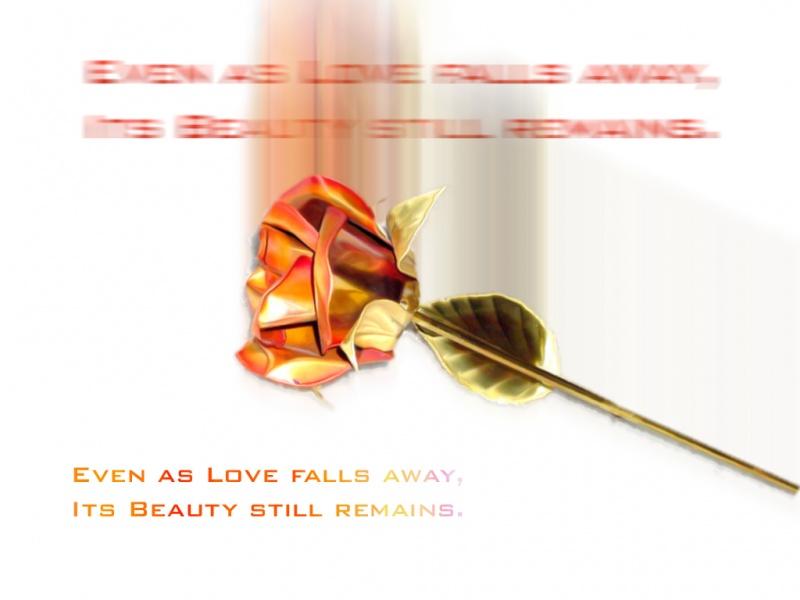 As Love Falls