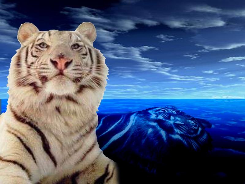 Tigers~R~Us
