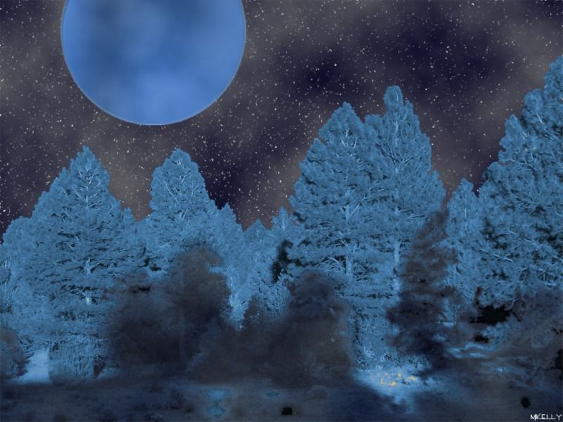 Dark Woods Blue