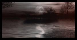 Sonata Nocturna