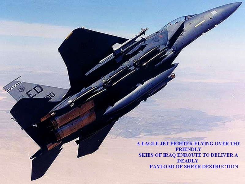 EAGLE JET FIGHTER