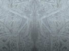 Ice Skreen
