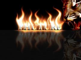 the phuture