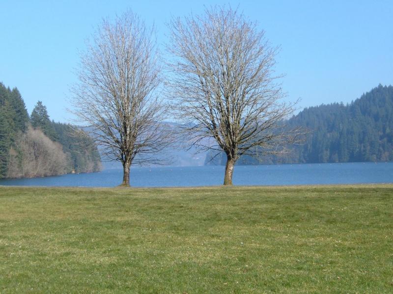 Lake Pretty