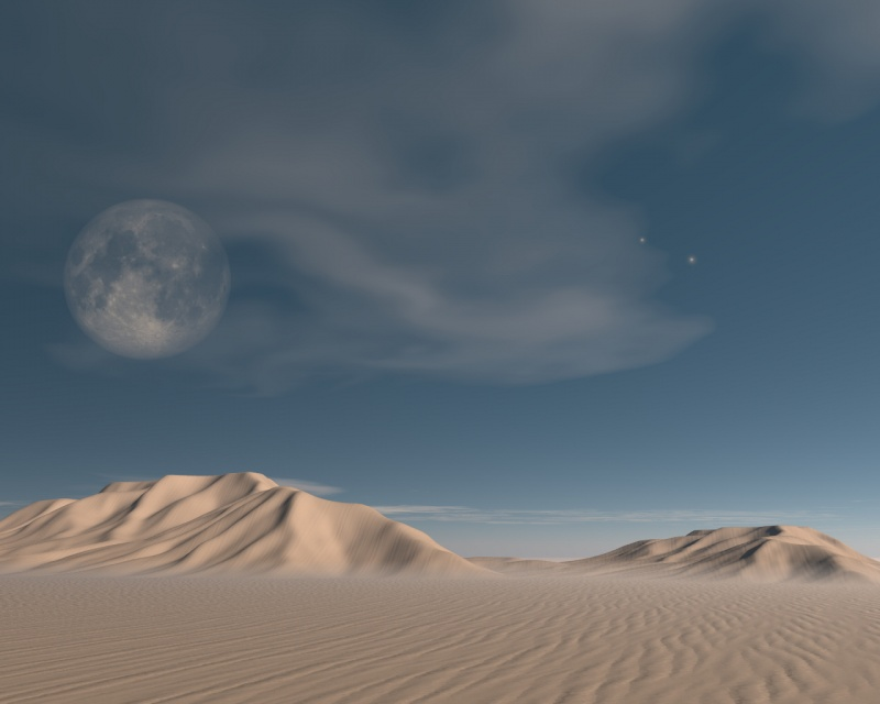 Sandline 2005
