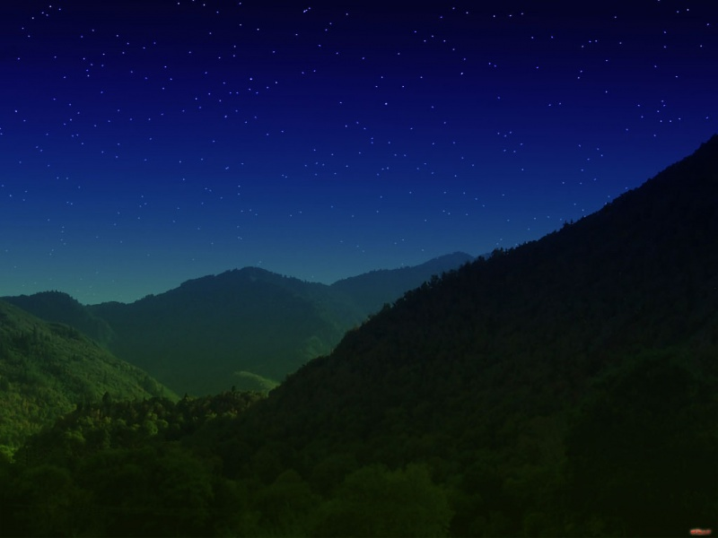 A Green Valley Night