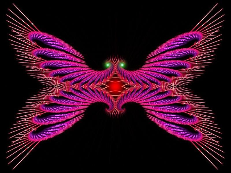 Porcufly