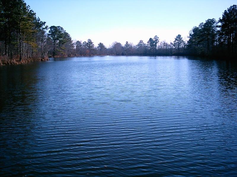 Wiggins Mill Lake (NC)