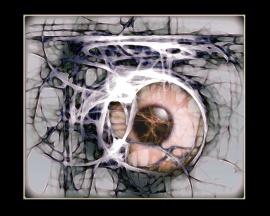 eye of macabre