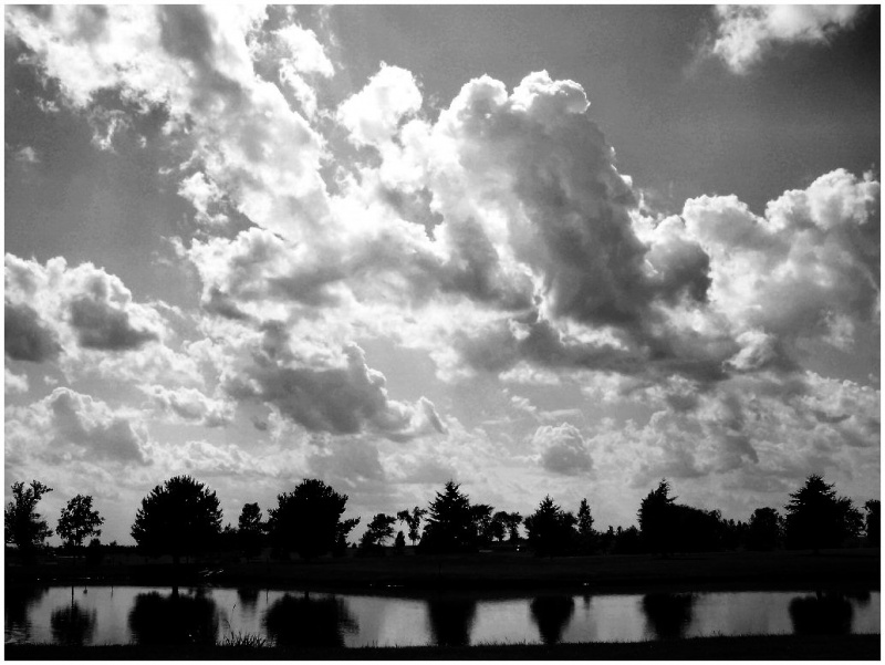 By the Lake B/W