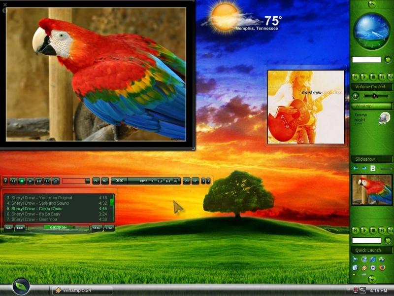 Ernies Bird