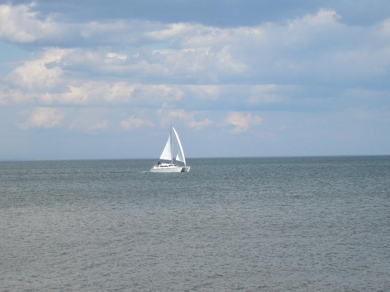 catamaran NewBrunswick