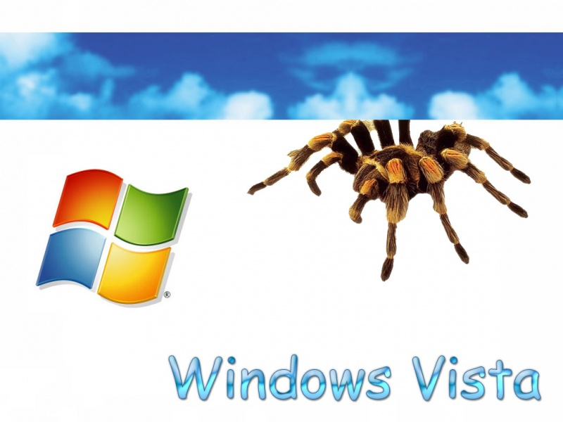 Windows Vista (TARANTULA)