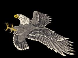 RJ - Eagle 1