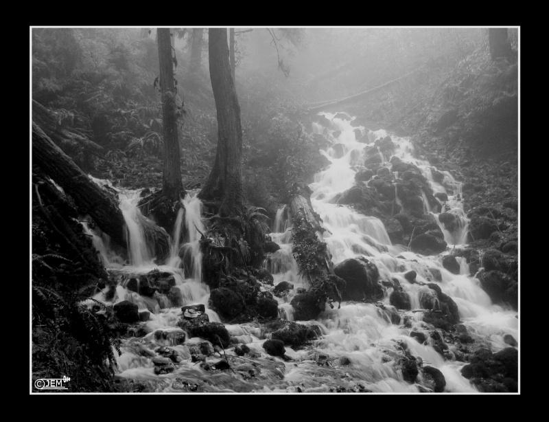 PNW Falls