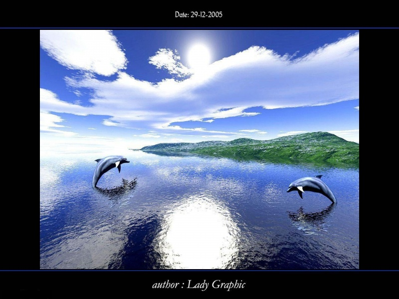 Two Dolphins and island
