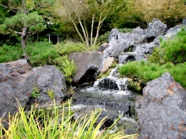 Japanese Gardens Waterfall