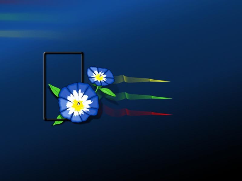 Flower-xp