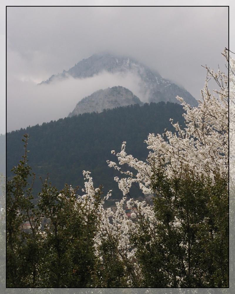 Overcast Peaks