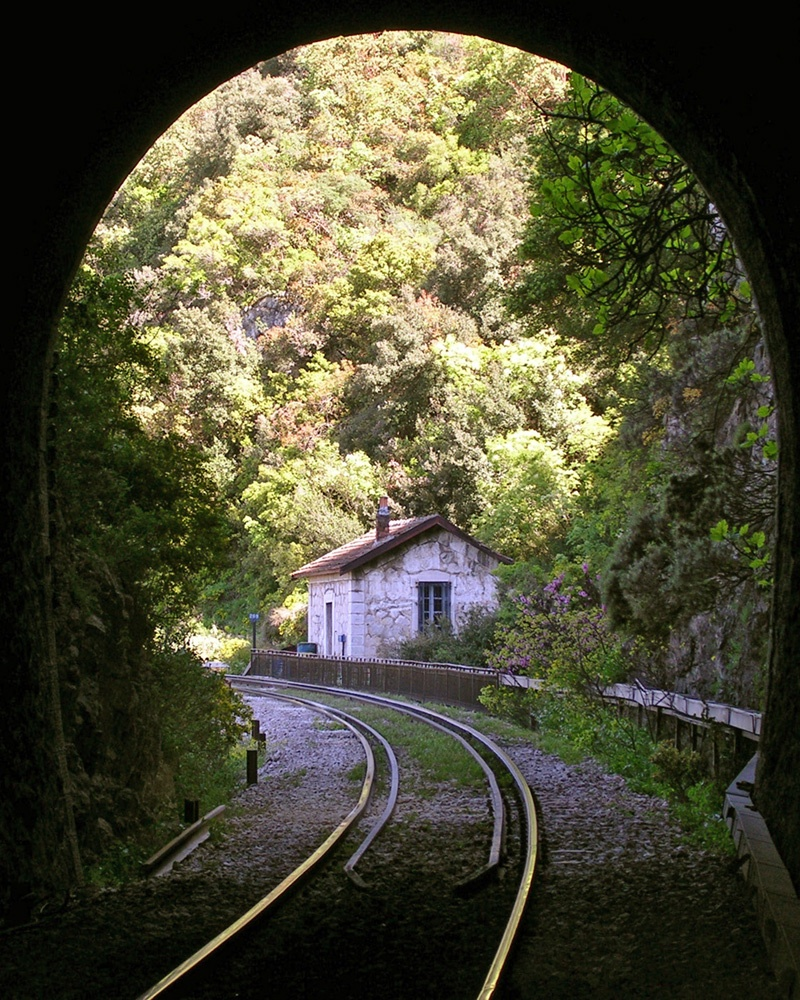 Tunnel Framed House