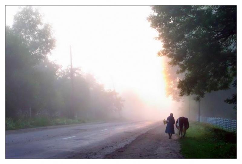 Misty day 03