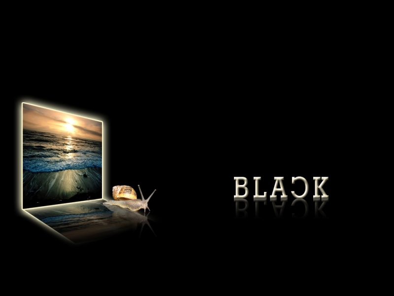 style-black