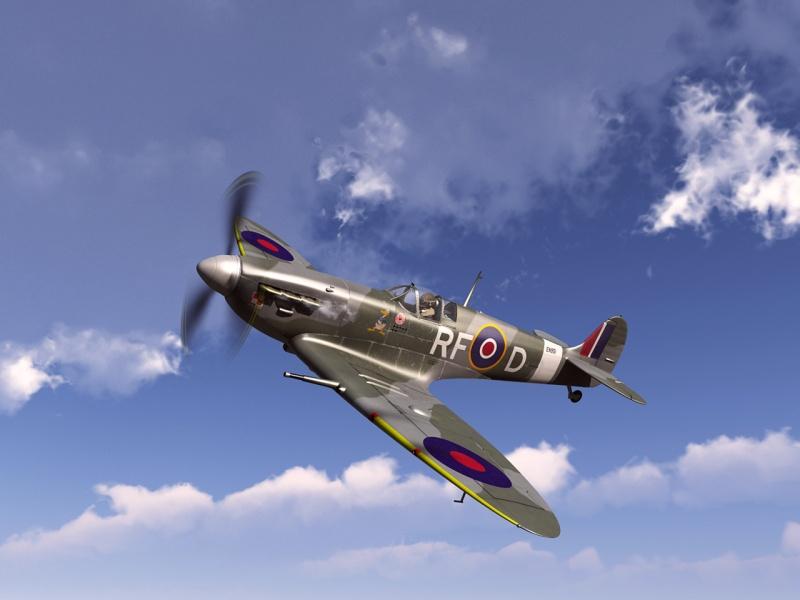 Division 303 Spitfire Standard