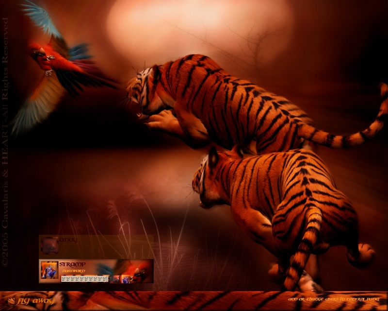 If Tigers Could Fly