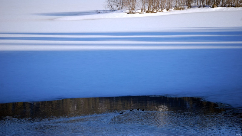 Winters Grip 2
