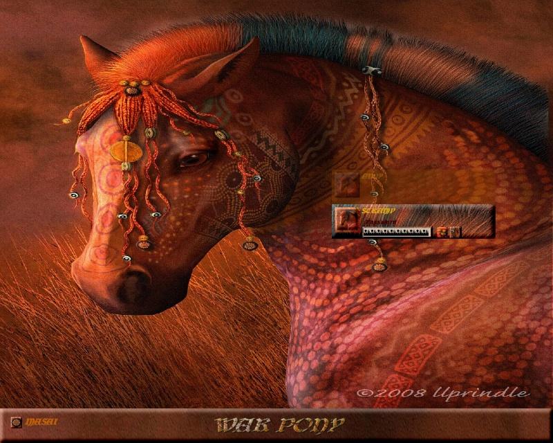 Masai War Pony