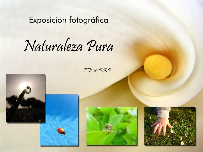 Naturaleza Pura