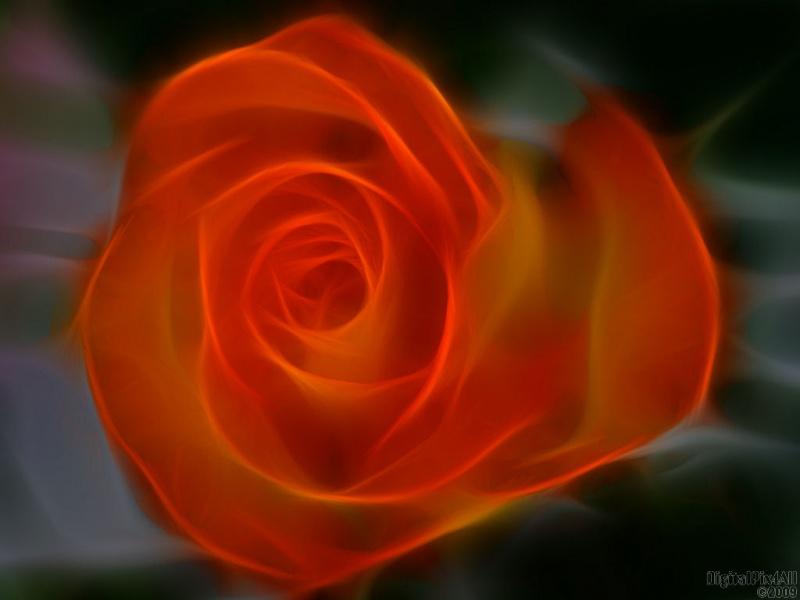 Rose Mod
