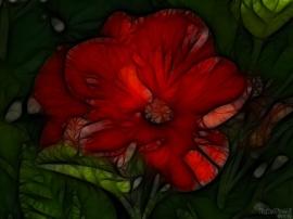 Hibiscus Mod