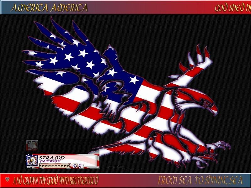 American Eagle_Dark