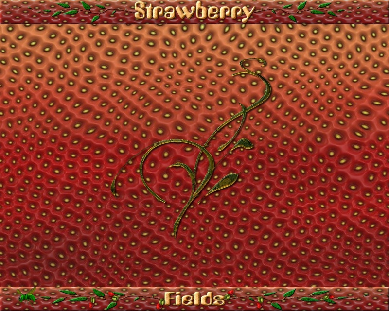 Strawberry Fields_walls