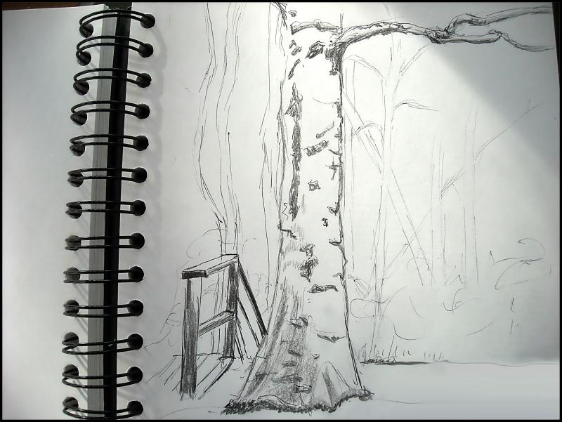 Sunlit sketch