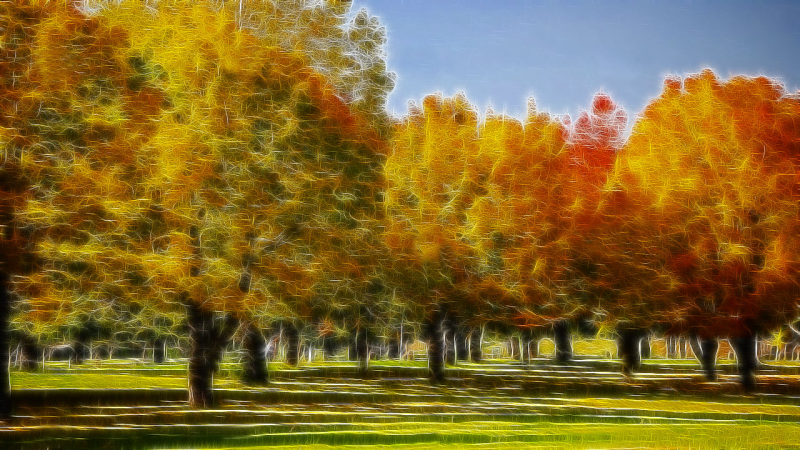 The park in Fall