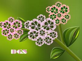 Scratch Flowers