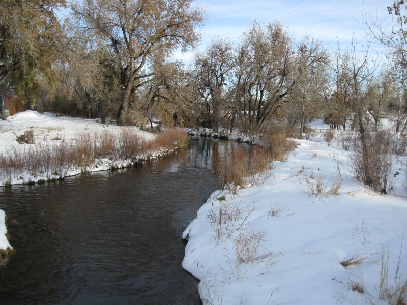 Creek after a Snow