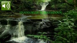Riverfalls ScSv