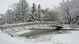 Snow Chill