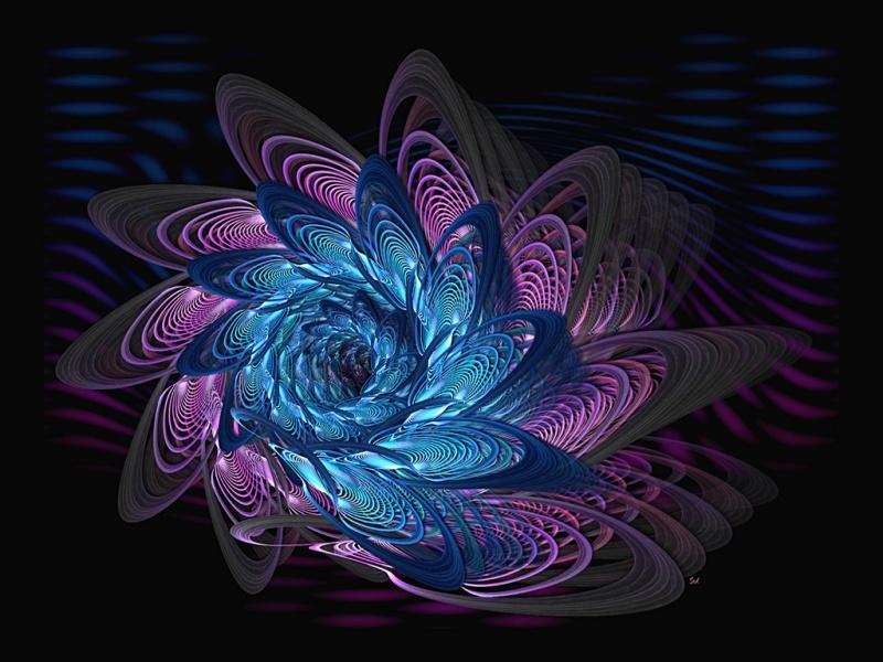 EXP 310 Blossom