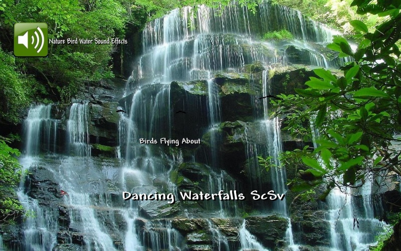Dancing Waterfalls ScSv