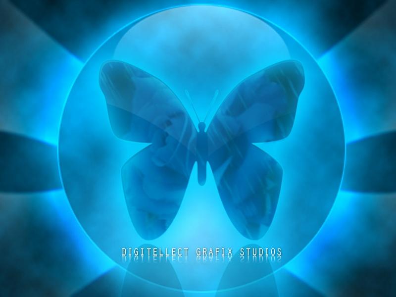 Butterfly v1.0
