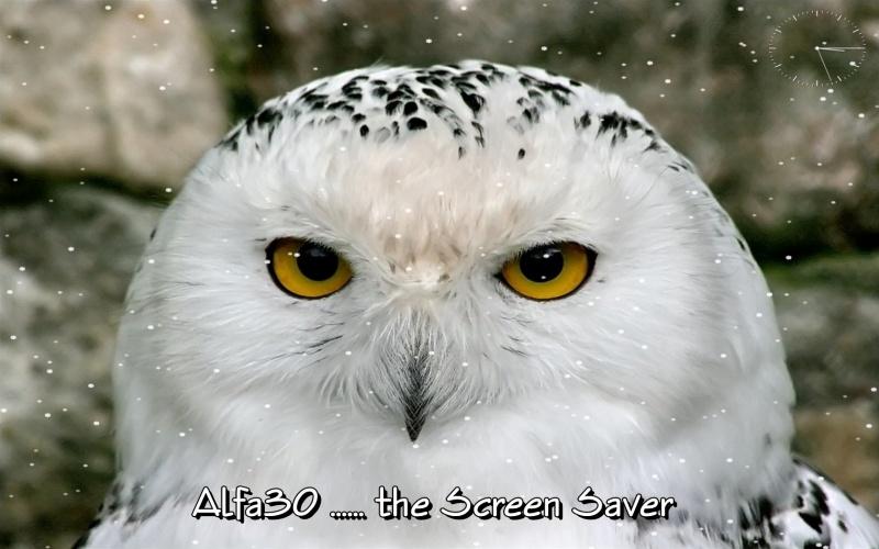 Alfa30 the ScSv