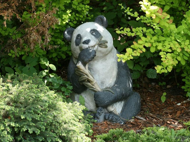 Hard Panda